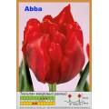 Махровые ранние тюльпаны (20)