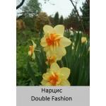 Нарцисс Double Fashion