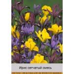 Ирис (Iris) сетчатый Mixed