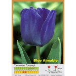 Тюльпан Blue Aimable